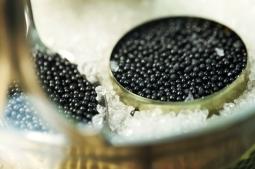 Black caviar in small round metal tin on ice